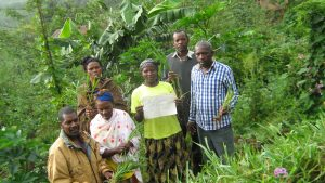 Planting elephant grass for land conservation