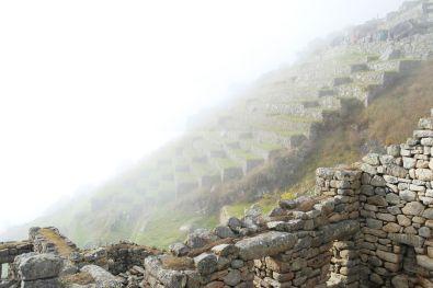 Terrassen im Nebel in Macchu Picchu