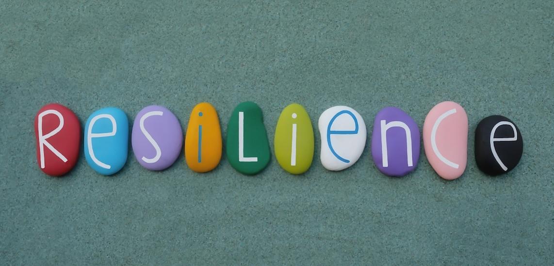 Alon Shklarek Blog Resilience