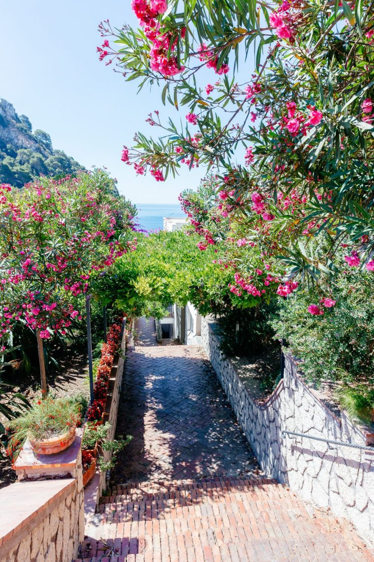 Capri Travel Guide via A Lo Profile
