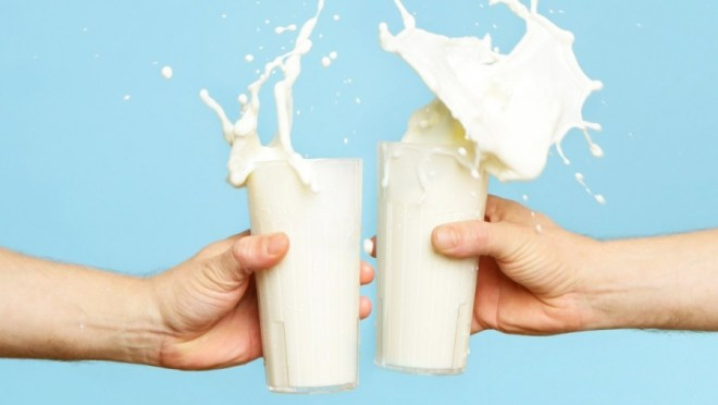 Image result for lactose intolerance