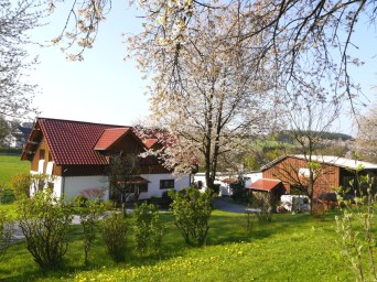 Alpakazuchthof