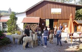 Alpaka Einsteigerseminar