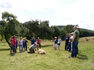 Alpaka-Einsteiger-Seminar