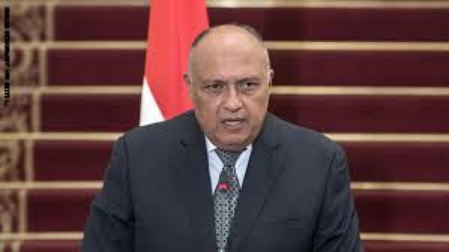 سامح شكري- وزير الخارجية