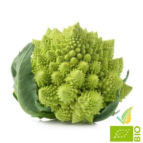 Broccolo Romanesco Biologico