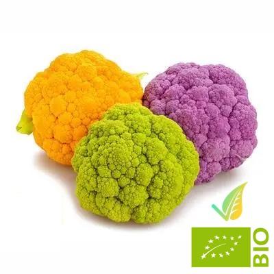Cavolfiore Colorato Biologico