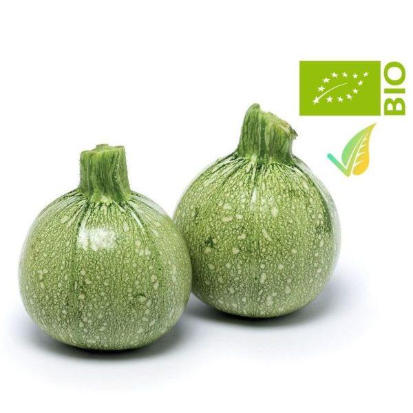 zucchina tonda
