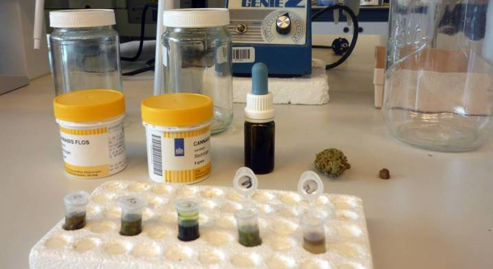 """Different types of samples, from cannabinoid herbal based to other cannabinoid derivates (left to right: Bedica®, Bedrocan®, tincture, flower, resin """"haschich"""")"""
