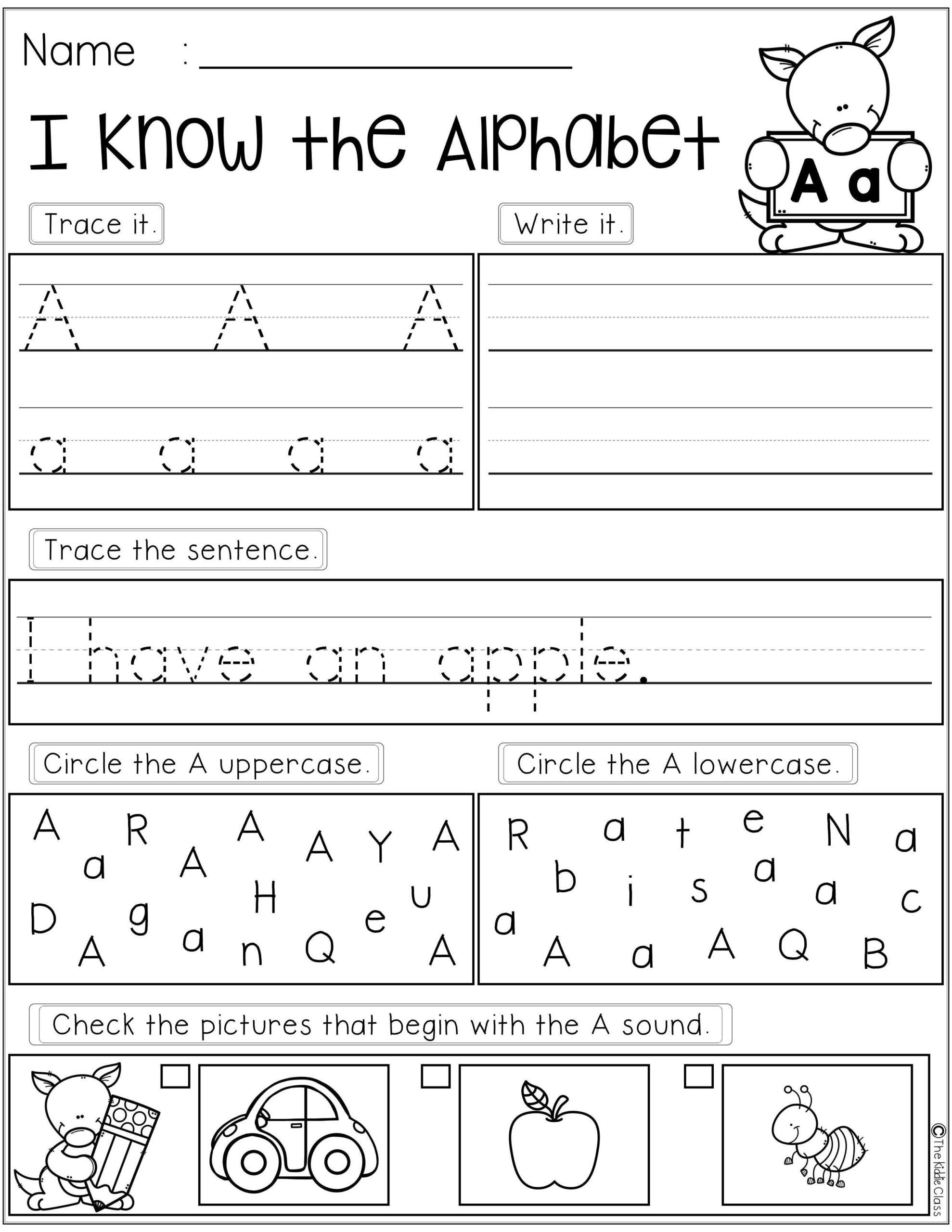 Alphabet Skills Worksheets
