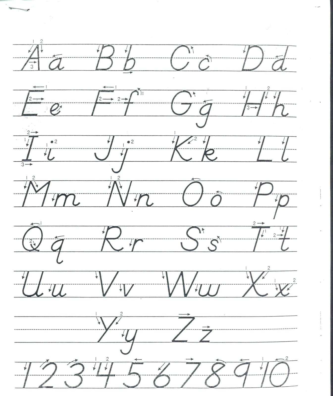D Nealian Cursive Alphabet Printable