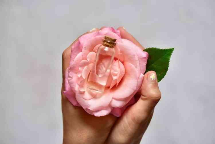organic DIY rose water. 2-ingredients