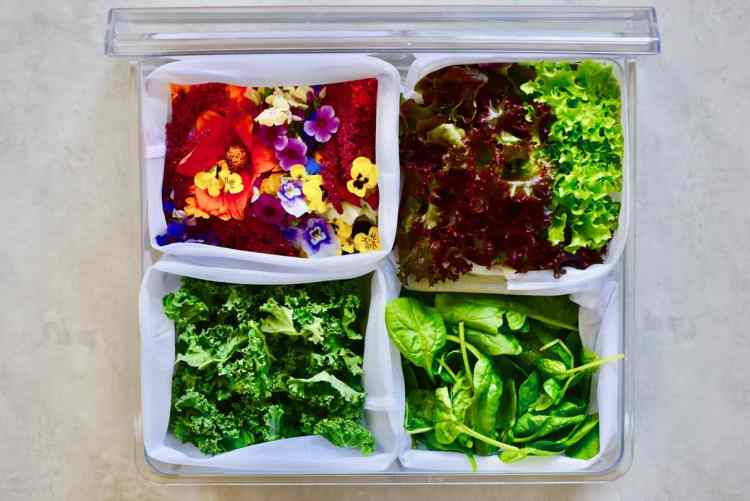 food storage hacks. how to store leafy greens to make the most of their shelf life. How to organise fridge