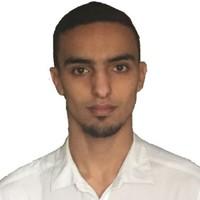 Oualid Handoura