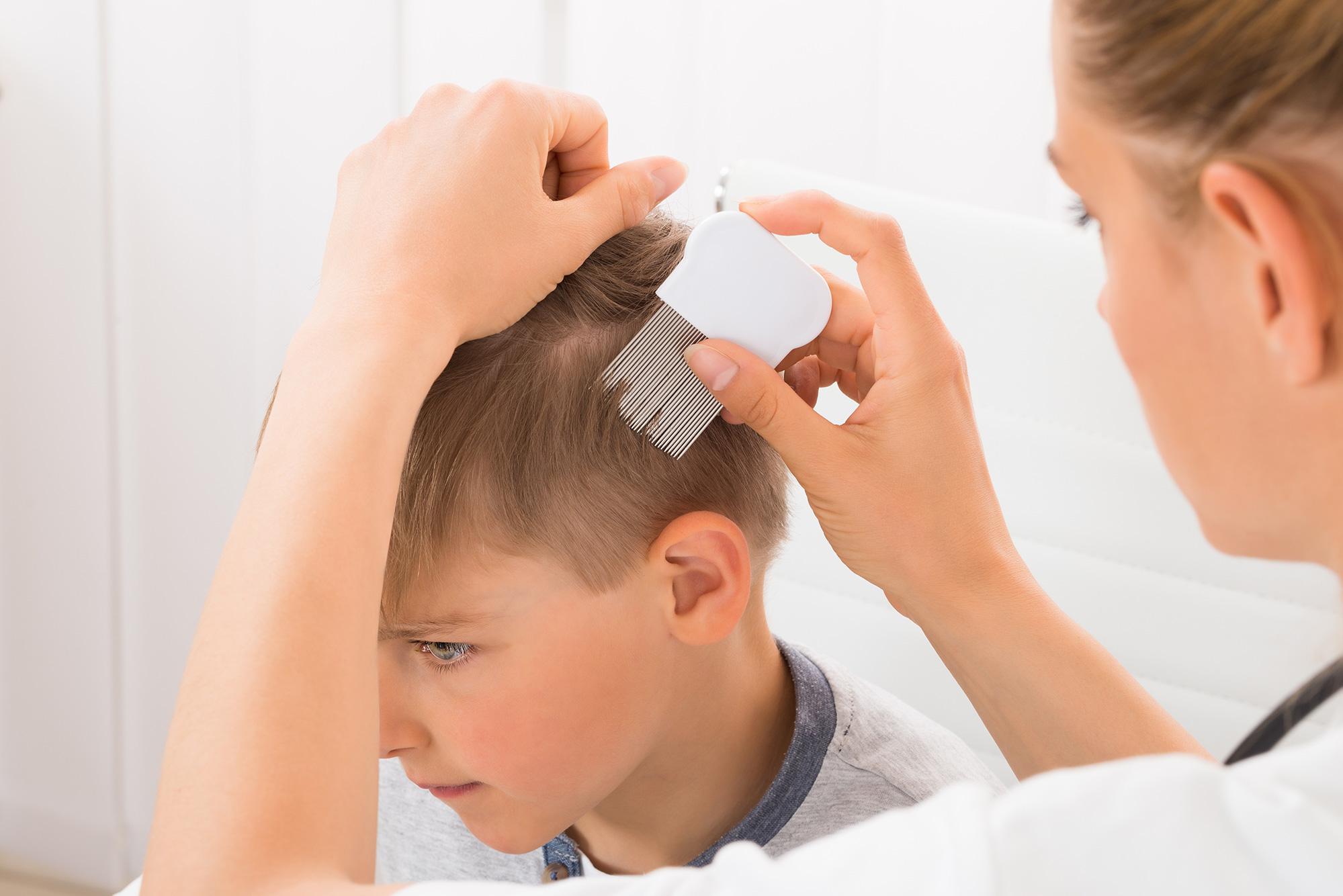 Photo d'une maman qui cherche les poux sur la tête de son enfant à l'aide d'un peigne anti-poux