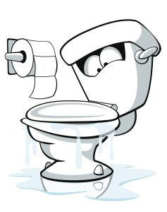 What to Do If Your Toilet Is Overflowing