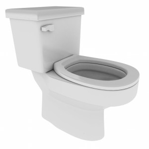 Why You Should Install Water Efficient Toilets