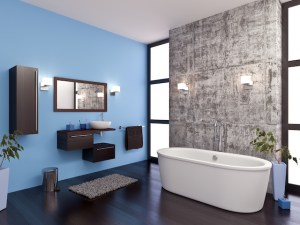 Professional Plumbers and Bathroom Remodels