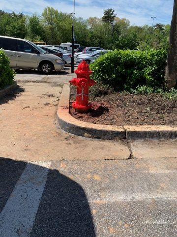 Fire Hydrant Replacement