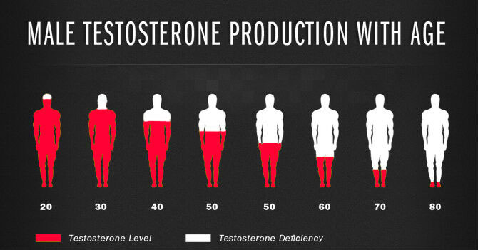 Male Testosterone Decline With Age