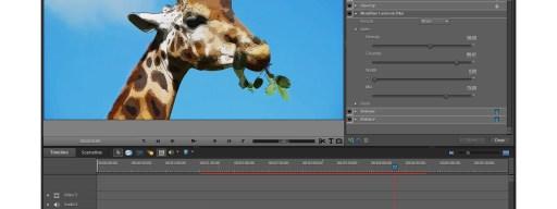Adobe Premiere Elements 9 - cartoon effect