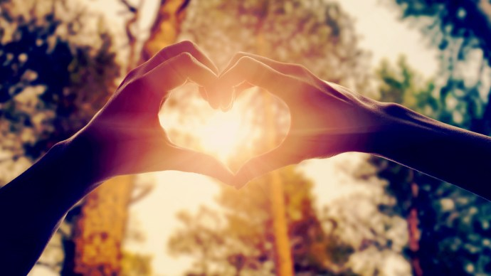 ten-science-myths-hands-forming-the-shape-of-a-heart