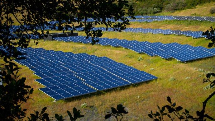 solar_panel_farm