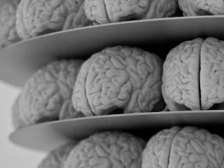 brains_on_the_internet