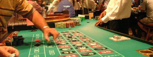 organisms_that_gamble