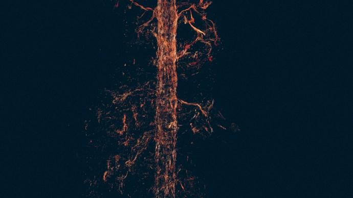treehugger_wawona_15