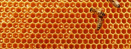 bees_royal_jelly