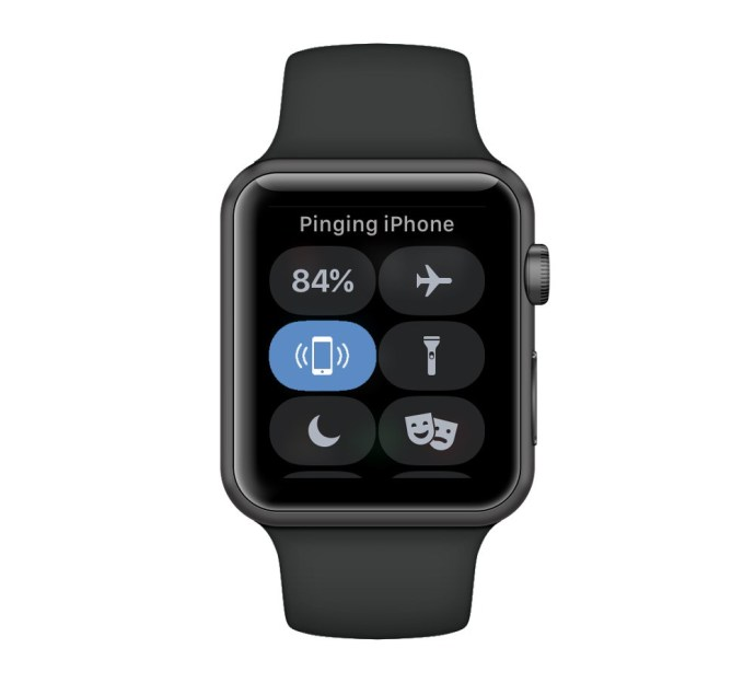 ping iphone apple watch