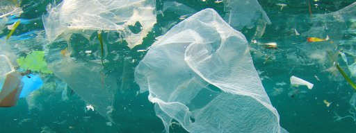 the_5p_plastic_bag_charge_is_doing_wonders_for_european_waters_-_1