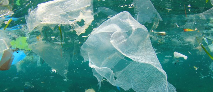 The UK 5p plastic bag charge is doing wonders for European waters