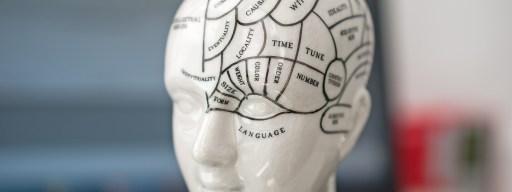 blue_brain_5_-_grey_matter_science_research
