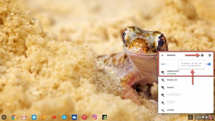 Info button Chromebook