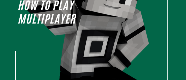 How to Play Multiplayer on Minecraft