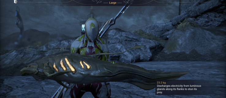 How to Fish in WarFrame