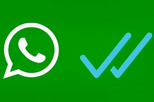 whatsapp check if someone is online