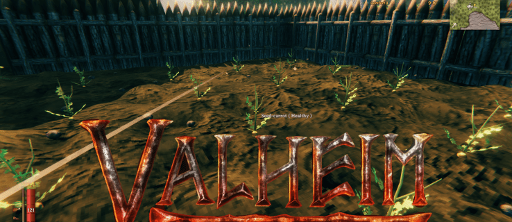 How To Plant Carrots in Valheim