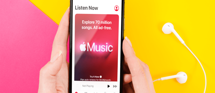 Apple Music: How to Download All Songs