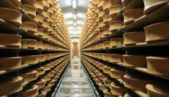 Guide to Alpine Cheeses