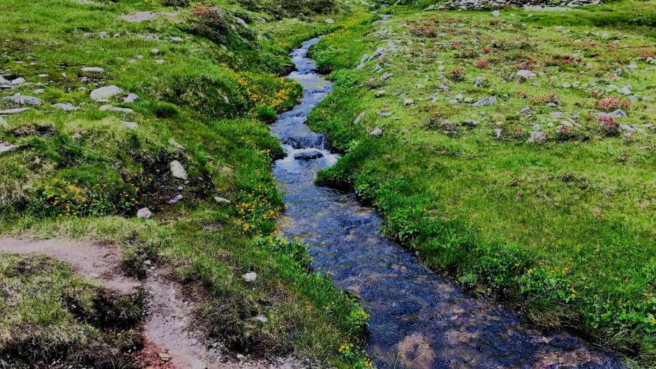 Auf dem Weg zum oberen Bockhartsee wird man von einem plätschernden Bach begleitet.