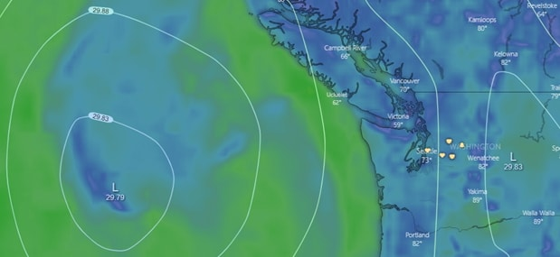Example low pressure visualization from Windy.