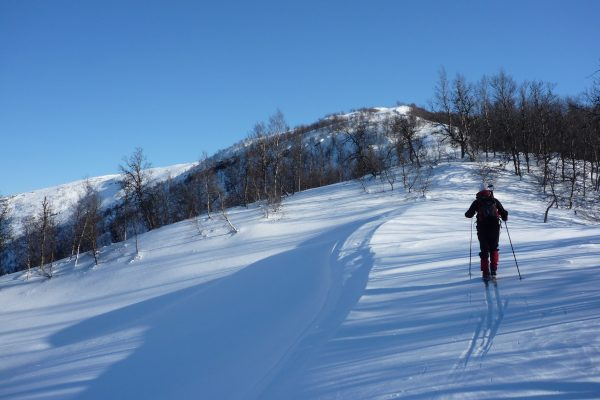 Avalanche course Nordic