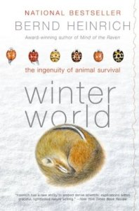 winter-world-2003