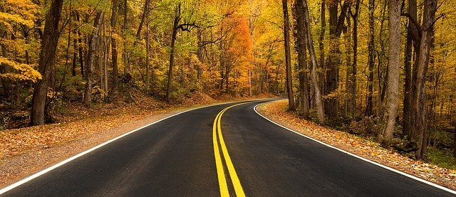 Rural Road Fall Scene