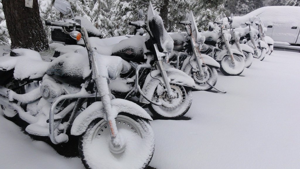 Motorcycles in the snow.