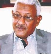 جلال الدين محمد أحمد شلية