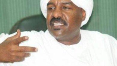 محمد سيد أحمد الجكومي